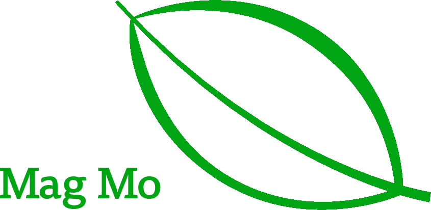Mag Mo GmbH Moringa mit Leidenschaft und Expertise
